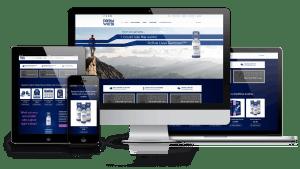 Web Design Company in Malaysia